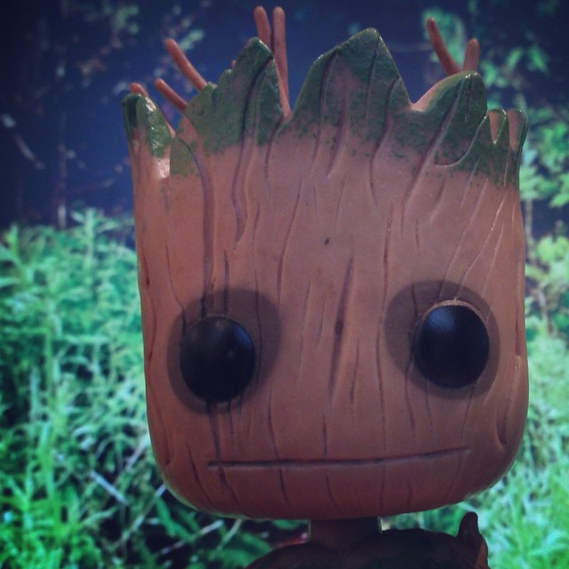 Groot Afternoon