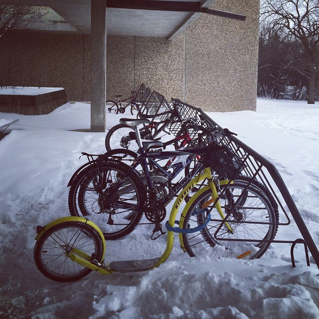 Can't fault Saskatoon for its persistence #OpToon