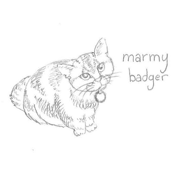 FC120 - Marmy Badger
