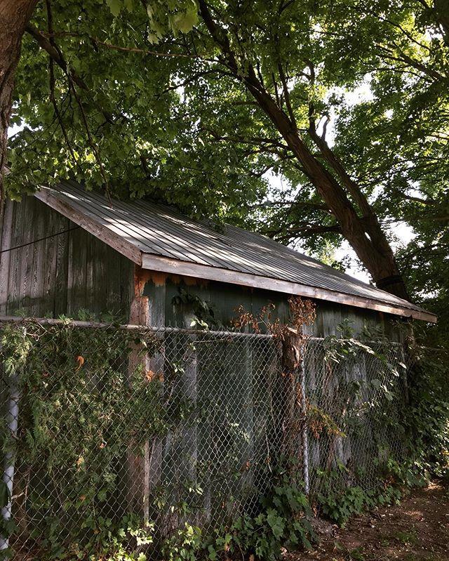 Abandoned #SkinnerCo