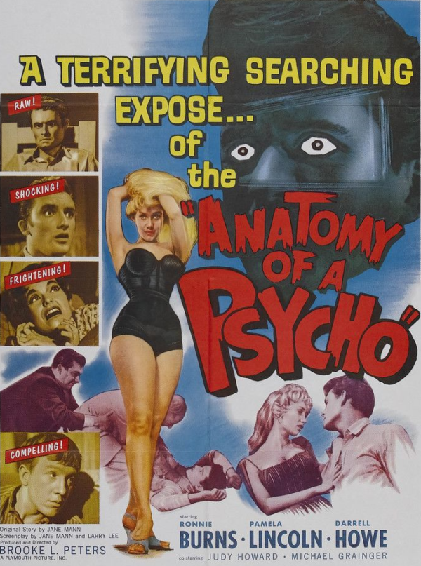 Anatomy of a Psycho Poster