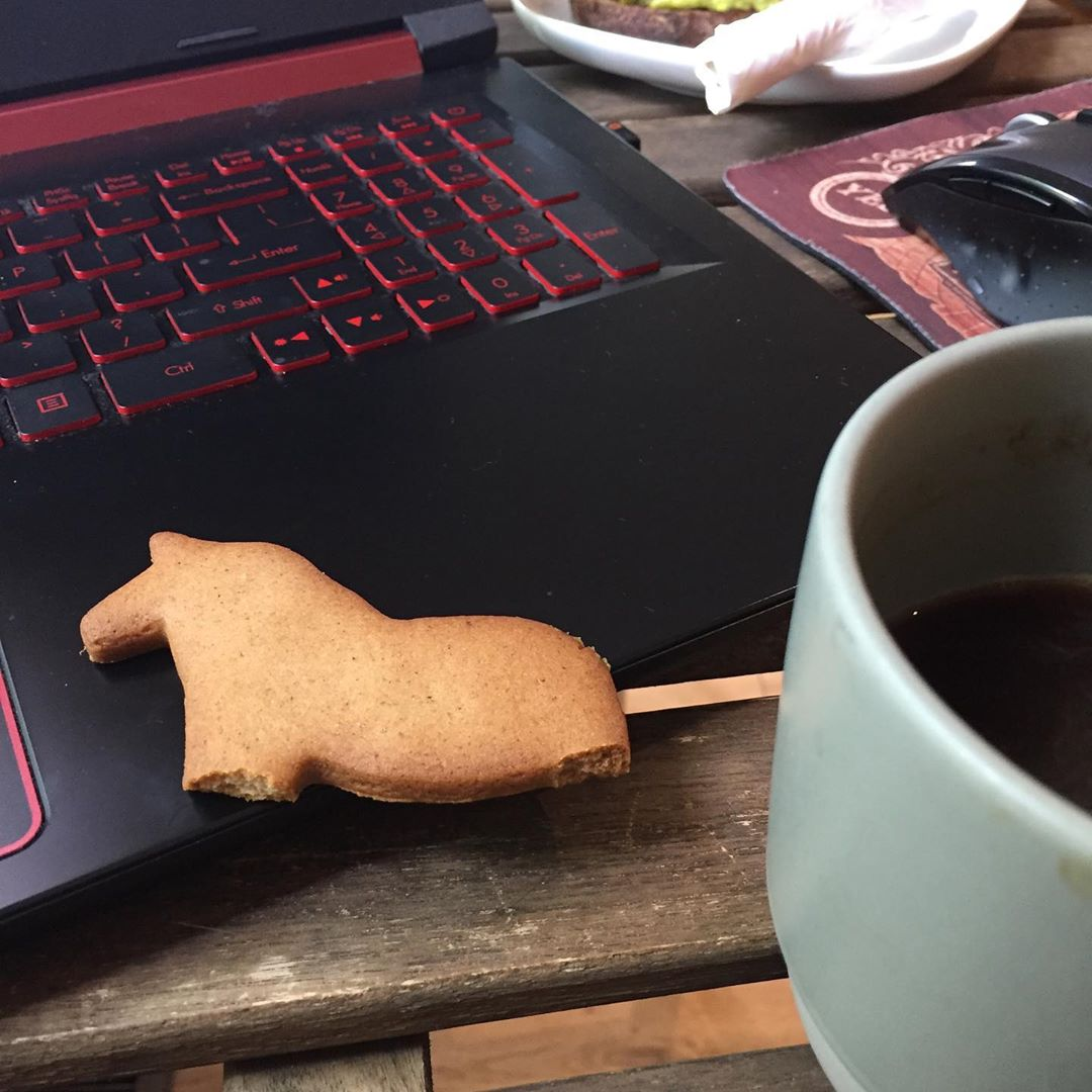 They have teeny gingerbread Icelandic ponies. Normally they have legs, but I got hungry. #skinnerco